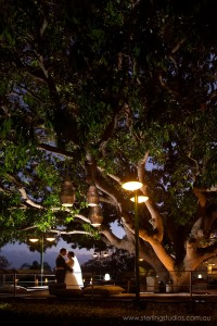 sunset under the big mango tree hillstone st lucia wedding